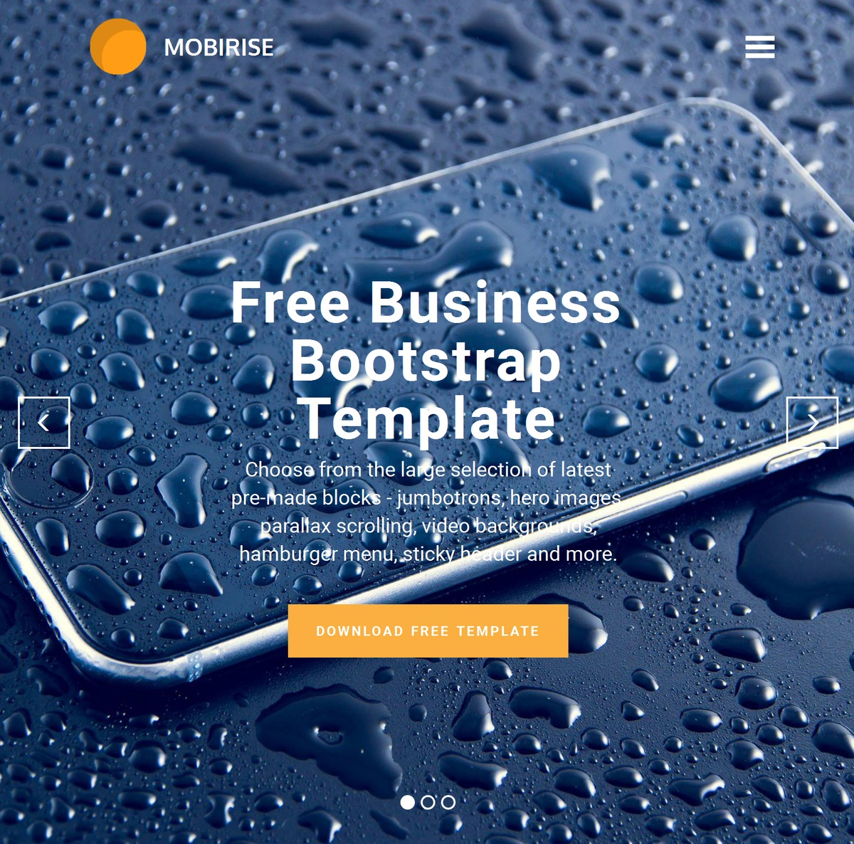 Simple Responsive Web Templates Themes Extensions