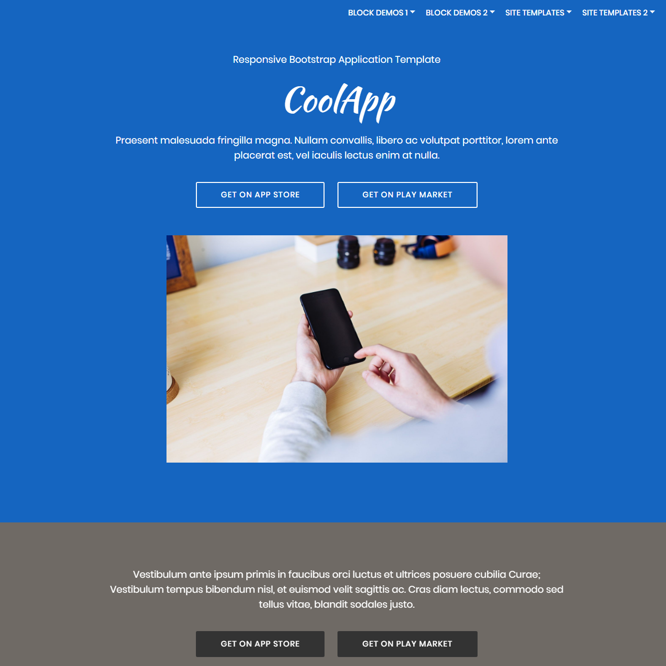 Responsive Bootstrap Application Templates